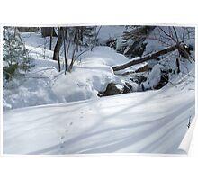 Snowprints Poster