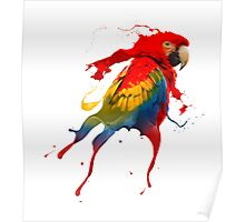 Creative parrot Poster