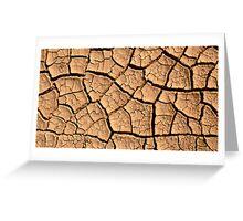 Desert Stone Greeting Card