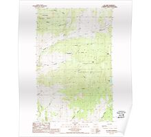 USGS Topo Map Washington State WA Mt Annie 242610 1988 24000 Poster