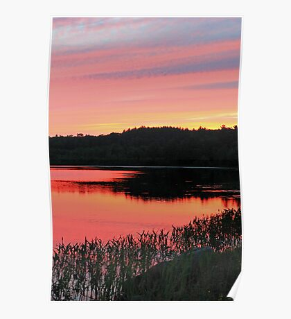 Lilly Pond Gilford, New Hampshire Poster
