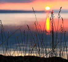 Sunrise 8-9-12 #8 by Steve Anthony