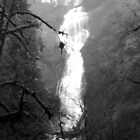 Eerie Munson Creek Falls by Jess Meacham