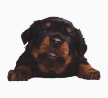 Cute Rottweiler With Tongue Out Isolated One Piece - Short Sleeve