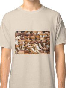 honey mushrooms Classic T-Shirt