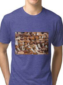 honey mushrooms Tri-blend T-Shirt