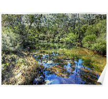 Megalong Reflections - Megalong Valley, Blue Mountains World Heritage Area - The HDR Experience Poster