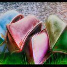 On Shore by Keri Harrish