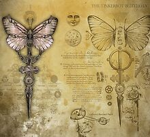 The Tinkerbox Butterfly by InsectsAngels