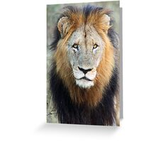Have you ever seen a mane like this!! Greeting Card
