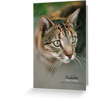 Yiddie Remembered © Vicki Ferrari Photography Greeting Card