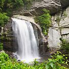 Looking Glass falls in Summer! by vasu