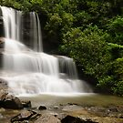 Boren Mill Shoals Falls! by vasu