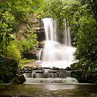 Full View of Boren Mill Shoals Falls! by vasu