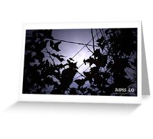 2 Birds on 2 Wires Greeting Card