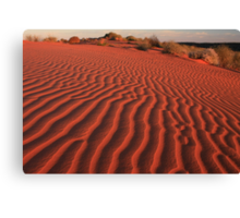 Sands of the Simpson Desert Canvas Print