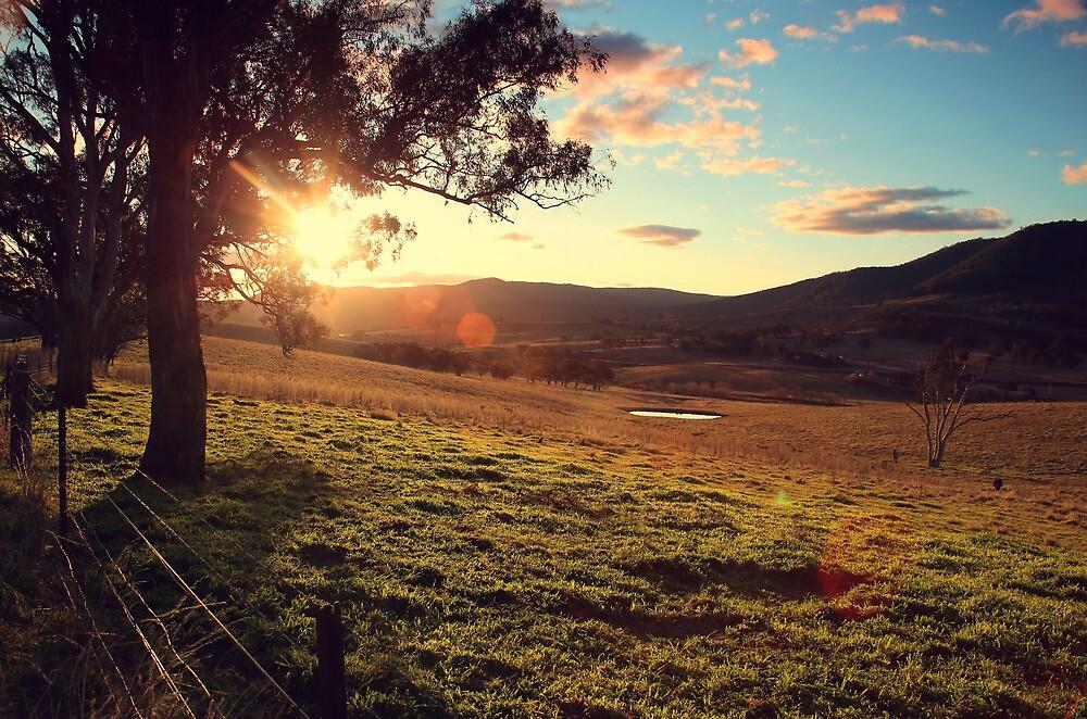 Sun shining in Oberon by kcy011