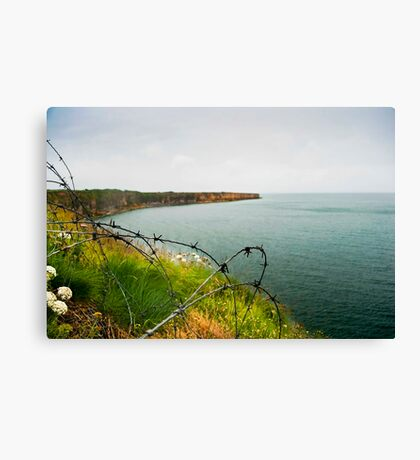 D-Day Canvas Print