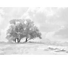 Snowy Scene Drawing Photographic Print