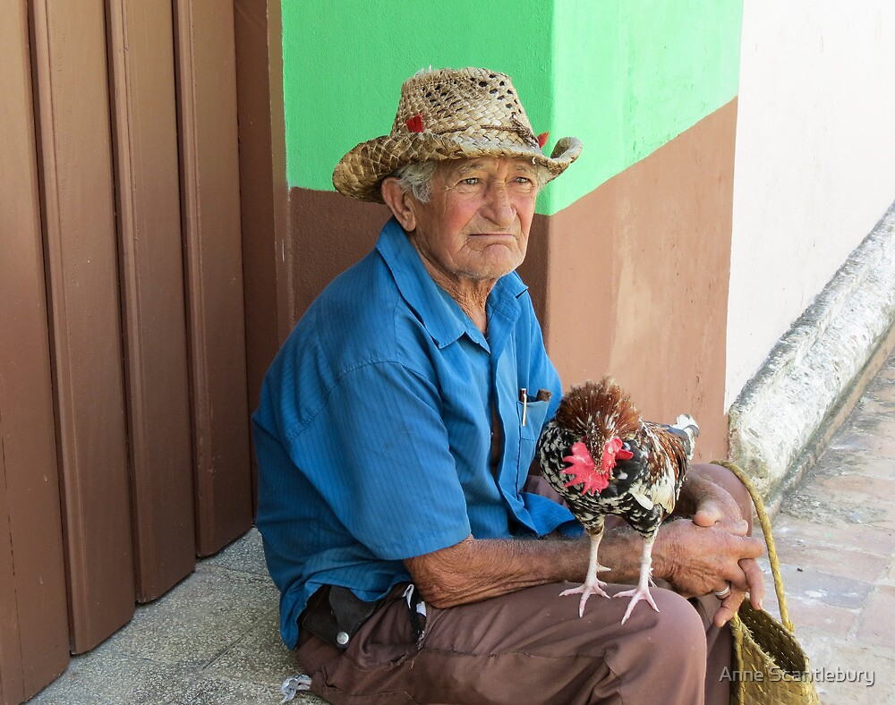 Man and rooster. by Anne Scantlebury