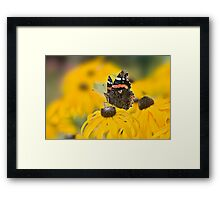 Summer Stunner Framed Print
