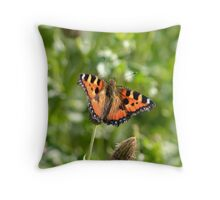 Tortoise shell butterfly, English Countryside. Throw Pillow