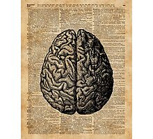Vintage Human Anatomy Brain Illustration Dictionary Book Page Art Photographic Print