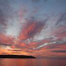 Morning Sun by Declan Carr