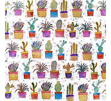 Watercolor hand paint cactus pattern Photographic Print
