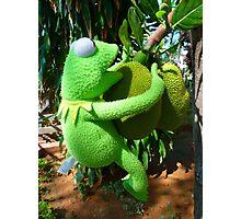 Jack Fruit Green Large Frog Kermit Photographic Print
