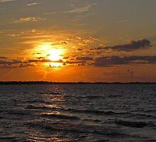 Lake Erie Sunset by Monnie Ryan