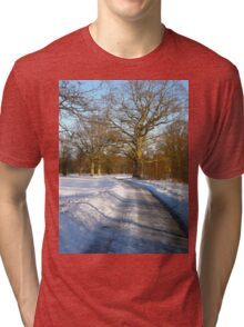 Entering the frozen woods Tri-blend T-Shirt