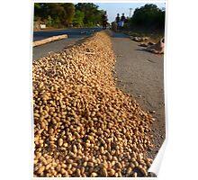 Peanut Peanuts Food Poster