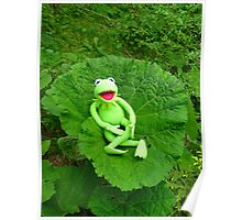 Butterbur Journal Large Nature Frog Kermit Poster