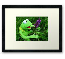 Orchid Getuepfeltes Frog Kermit Green Framed Print