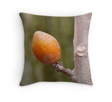 Fruit Tropical Orange Tree Exotic Throw Pillow