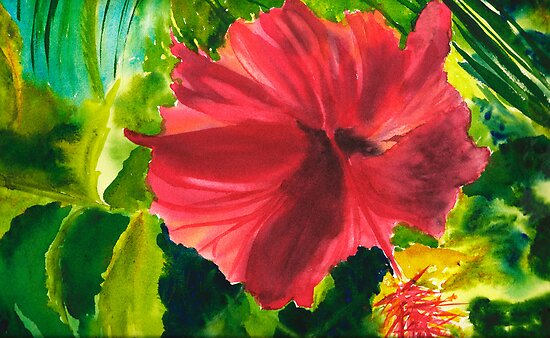 Honeymoon Hibiscus by Sally Griffin