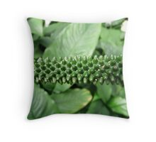 Flower Flask Flower Exotic Spadix Throw Pillow