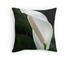 Spathiphyllum Vaginal Sheet Flower White Throw Pillow