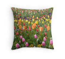 Tulip Field Tulpenbluete Colorful Colourful Throw Pillow