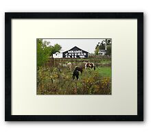Route 66 - Horses and Barn Framed Print