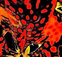 Leopard Lily by Carolyn Repka