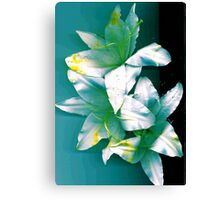Three Lillies Canvas Print