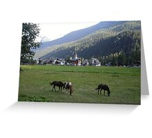 al pascolo... Monte Rosa 1800 metri - Piemonte - Italia - Europa--1500 visualizzaz maggio 2013-VETRINA RB EXPLORE 14 SETTEMBRE 2012 --- Greeting Card