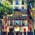 "From Paris ""Metropolitain""  by vampyba"