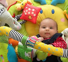 Toys, Glorious Toys! by Sarah Jane Bingham