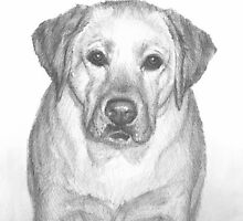 therapy dog drawing by Mike Theuer