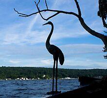 Echo Island Heron by Jessica Liatys