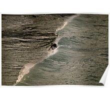 Surfing in St. John Poster