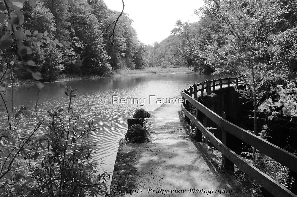 Filmore Glen State Park, NY by Penny Rinker